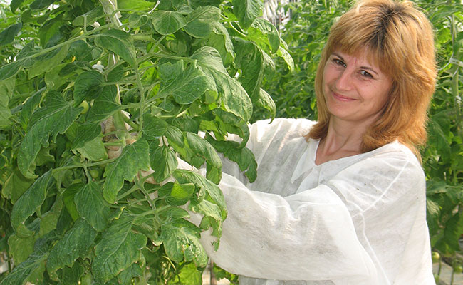 Macedonian farmer tends her greenhouse crops.