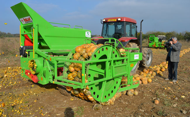 Demonstration of improved pumpkin harvesting equipment and technology in Kosovo