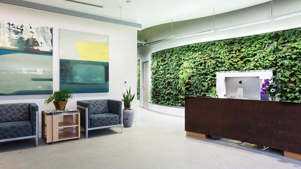 Biophilic design plays a crucial element in occupant wellness and indoor air quality, such as this living wall at Arch|N