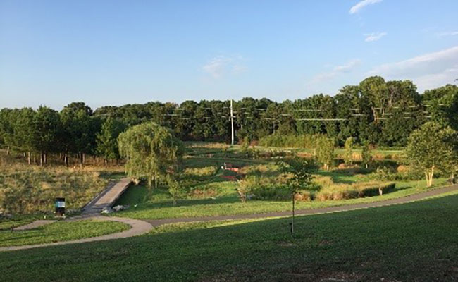 Raleigh Museum of Art campus connects to a Parks and Recreation area to combine aesthetics, open space, ecological servi