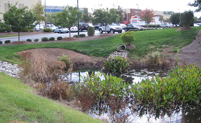 Constructed wetland in Morrisville, NC, creates aesthetically pleasing green stormwater infrastructure that helps protec