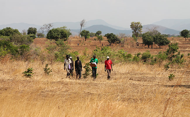 Tetra Tech is supporting USAID to improve land tenure and sustainable communities in Zambia and Myanmar
