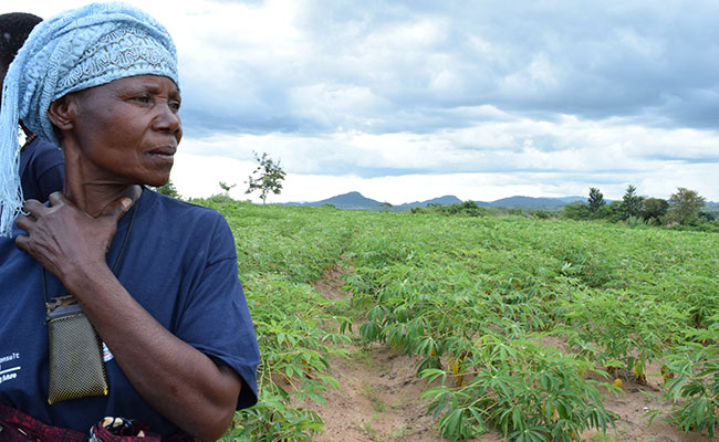 Tetra Tech Incorporates Real-time Data to Strengthen Community Resilience in East Africa