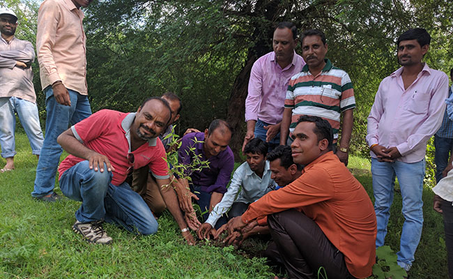 Partnerships in India Foster More Effective Forest Management