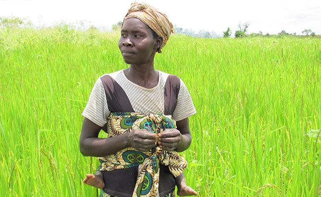 Growing Uganda's Agricultural Economy
