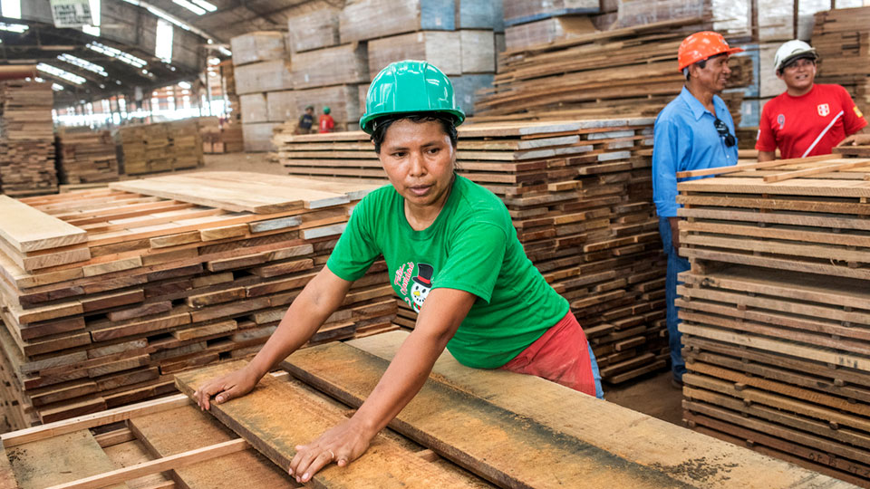 Hard at work at a sawmill in Pucallpa, the Amazonian city where most of the timber transformation takes place.