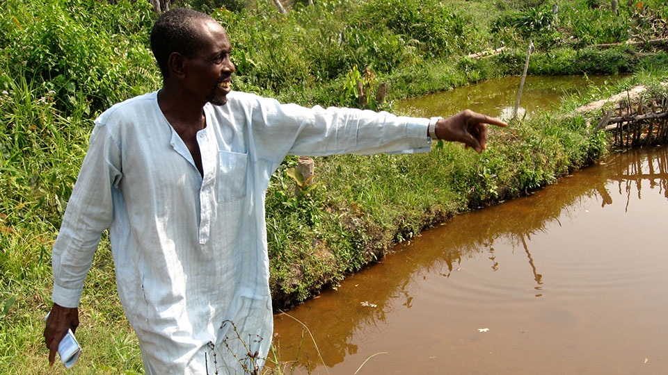 A man in Côte d'Ivoire looks out on the ponds where he and his village mine for diamonds.