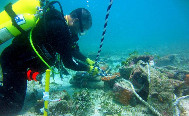 NOAA Lobster Habitats