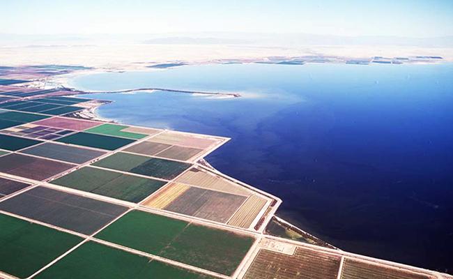 Salton Sea 3
