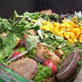 Helping Reduce Food Waste in Canada