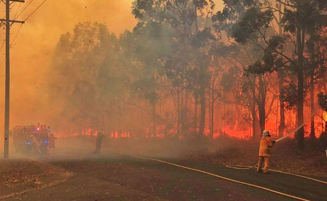 Rural Fire Service volunteers at a bushfire on the South Coast of New South Wales