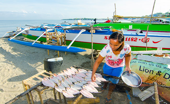 Sustainable Small-scale Fisheries