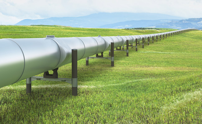 Silver raised pipeline traverses a large grassy expanse