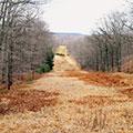Rooney REI Pennsylvania Pipeline
