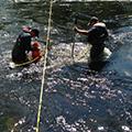 Emergency Oil Spill Response