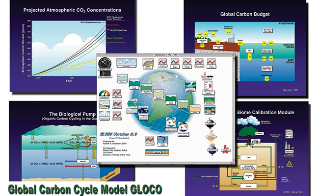 Global Carbon Cycling Model