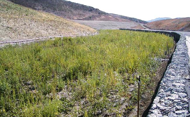 Orange County Landslide Remediation