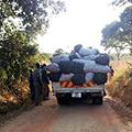 Community-Based Forest Program, Zambia