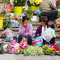 Local Governance, Peru
