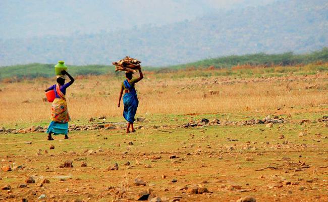 Partnership for Land Use