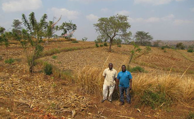 Shifting rainfall patterns and increased temperatures are changing the productivity of rainfed agriculture.
