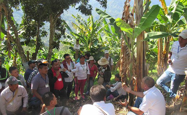 Government consultation process with Bari leaders regarding Catatumbo National Park