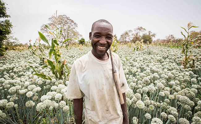 A farmer stands in front of his onion farm in Nigeria