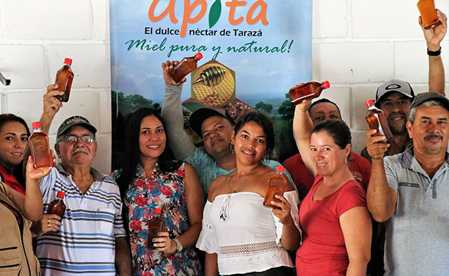 Strengthening productive associations in Tarazá, Antioquia Department, to increase honey and other licit products