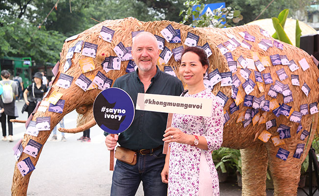 A life-sized bamboo elephant is used to raise awareness of the effects of the illegal wildlife trade