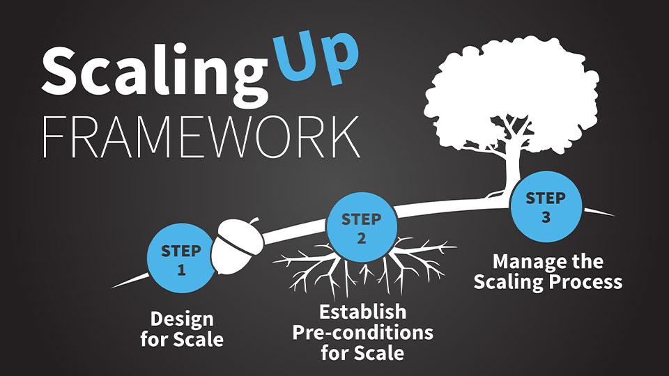 MSI's Scaling Up Framework.