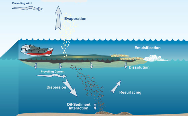Oil and Contaminant Spill Model