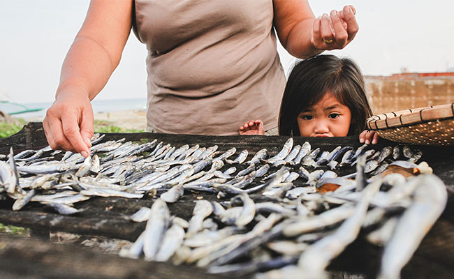 Merging science and policy to enable transparent communications and stabilize the small-scale fisheries market