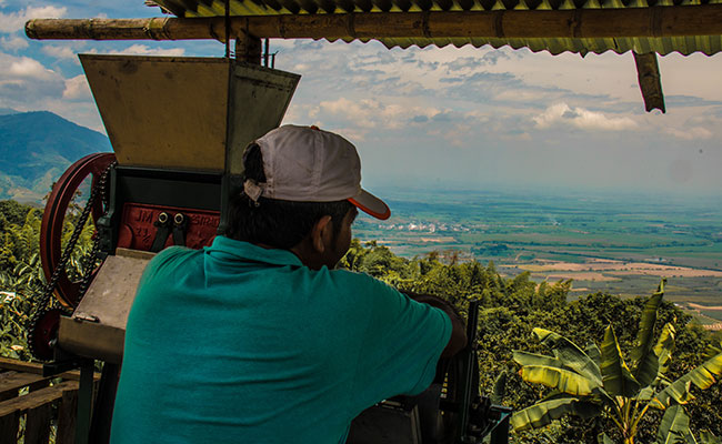 A man overlooks the landscape in Colombia