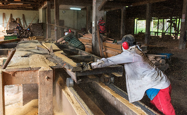 Workers at a local sawmill in the district of Requena, Loreto.